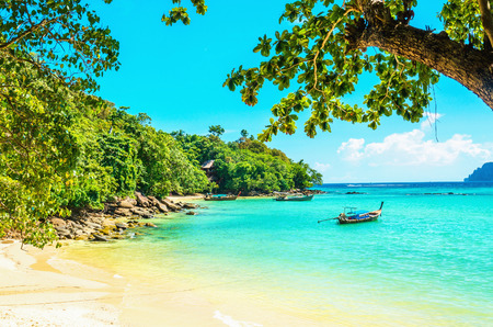 Paradise beach with golden sand, exotic trees and blue sky Stock Photo