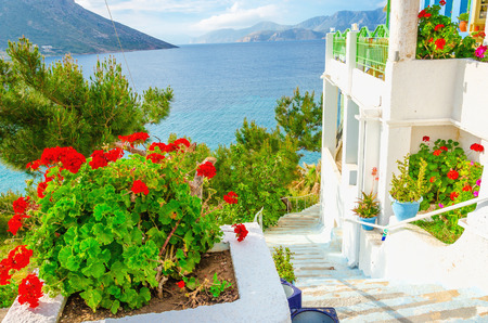 Verse rode bloemen en witte muren van het appartement op de Griekse Eilanden, Griekenland Stockfoto