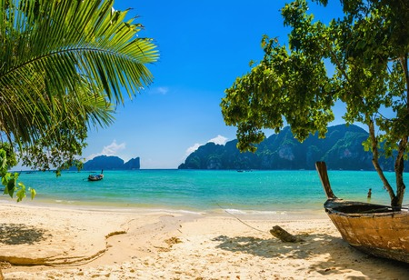 Exotic beach with palms and boats on azure water, Phi Phi Island, Phuket area, Thailand