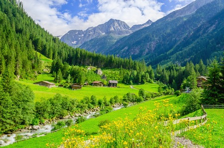 Beautiful alpine landscape with green meadows, alpine cottages and mountain peaks, Zillertal Alps, Austria Imagens