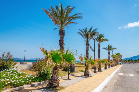 Exotic view full palm shore of one of the Greek islands Stock Photo