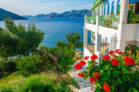 Breathtaking view from garden and terrace of Greek residence with red flowers and sea bay, Greece