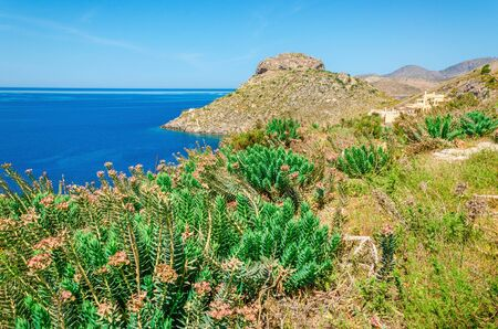 cefalonia: View of Greek sea bay with grass and bushed on foreground and clear blue sky, Kos, Greece