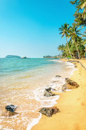 Verbazend exotische Caribische strand vol palmbomen tegen de azuurblauwe zee en de blauwe hemel Stockfoto