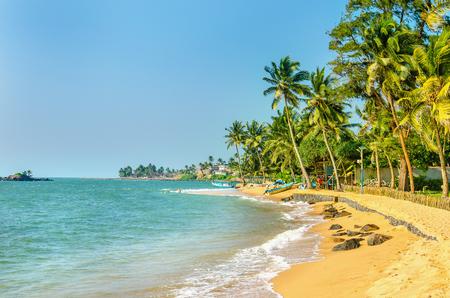 Mooie exotische Caribische strand van goudgeel zand vol palmbomen