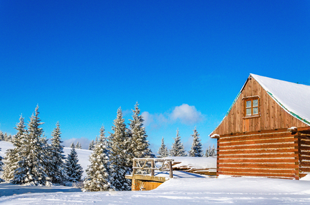 Beautiful mountain wooden hutin winter landscape with evergreen trees, Carpathian Mountains, Poland, Europe