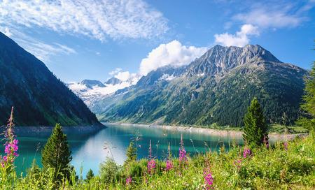 Glashelder bergmeer Schlegeis met kleurrijke bloemen en bergtoppen op de achtergrond, Schlegeis, Zillertaler Alpen, Mayerhofen, Oostenrijk Stockfoto