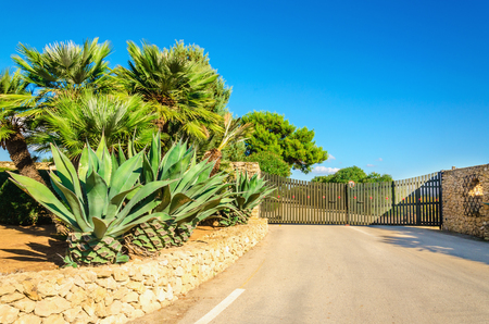 The gate to the garden with beautiful exotic plants, Sardinia, Italy Stock Photo