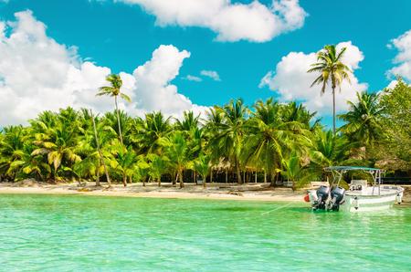 驚くべき高いヤシ、カラフルなボートとドミニカ共和国のエキゾチックな海岸 写真素材