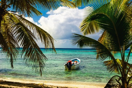 White motorboat moored on exotic coast with beautiful amazing palm trees entering the sea, Dominican Republic