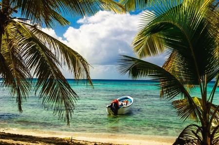 도미니카 공화국 바다를 입력하는 아름 다운 놀라운 야자수와 이국적인 해안에 정박하는 흰색 모터 보트 스톡 콘텐츠