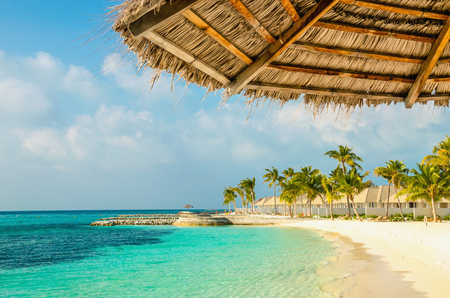 Palm tree umbrellas and  exotic Maldivian sandy beach, Maldives