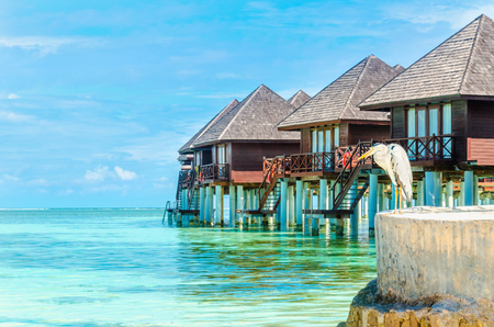 Heron and huts on the water, Maldives
