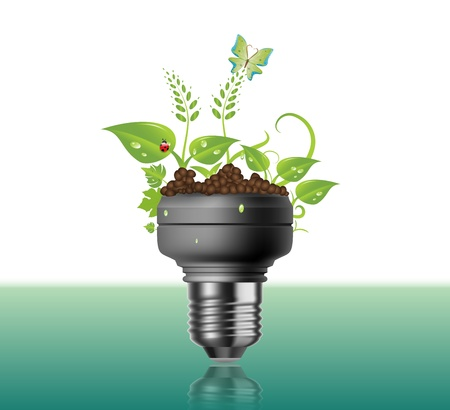 Light Bulb With Plants And Flowers photo