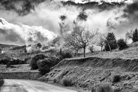 melodramatic: Winter Black and White photo of cloudy dramatic sky with trees Stock Photo