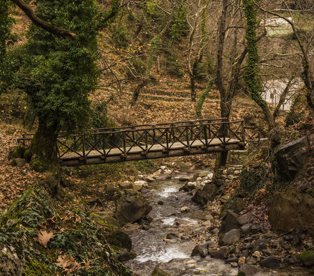 Small wooden bridge over a stream in a forest at winter season photo