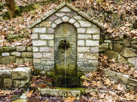 source d eau: Source potable Stoned dans la for�t avec des feuilles d'hiver Banque d'images