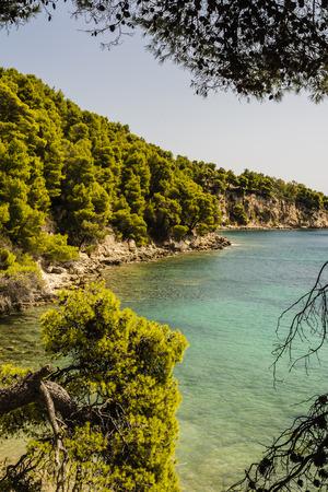 sporades: Idyllic Beach of alonissos at Sporades, Greece
