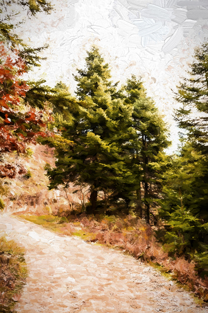 piny: Forest road running through trees - painting
