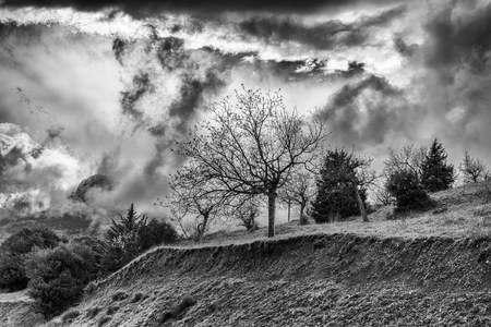 Winter Black and White photo of cloudy dramatic sky with trees Stock Photo