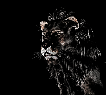 Abstract Lion at black background