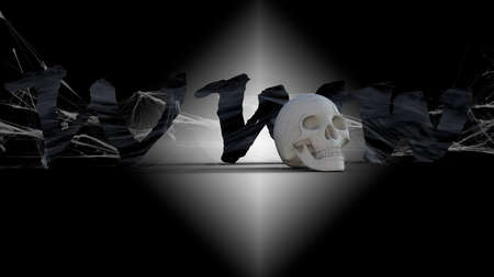 WWW 3d text, skull , piracy, hacking computer, cyber crime technology, darknet