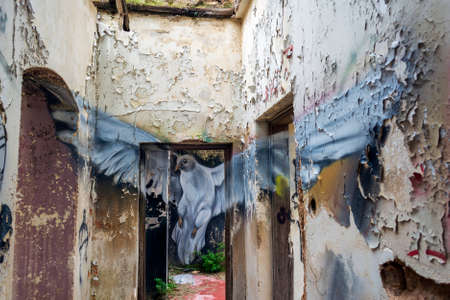 Villa Levidi, Pallini, Greece - February 14, 2021: Pigeon wall painting at an abandoned old villa at Pallini, Greece 免版税图像 - 164358549