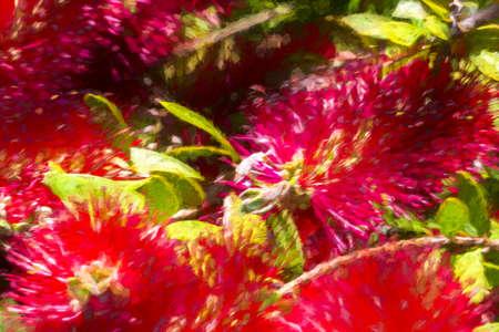 Digital painting of vibrant red flowers - illustration