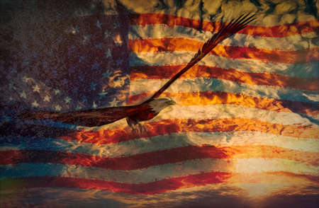 Illustration of an eagle with american flag background - 3D rendering and digital paint 免版税图像