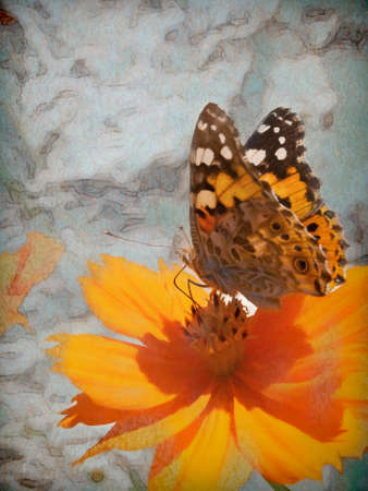 A Butterfly Nectaring On An Orange Flower - digital painting