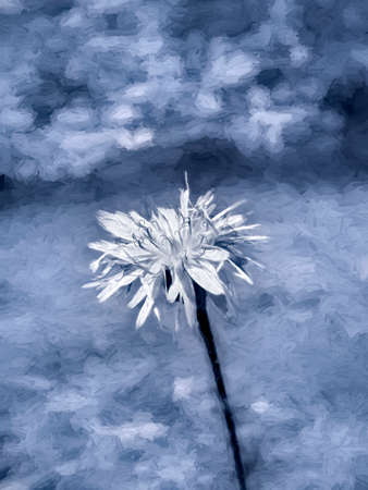 White flower at blue abstract background - digital paint