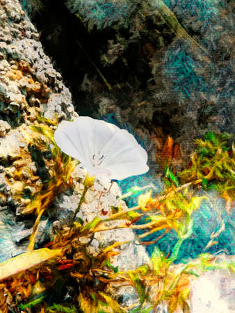Digital painting of a white flower in the rock - painting effect
