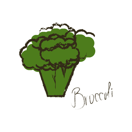 Hand drawn illustration of green broccoli. Lettering of vegetable name. Isolated object on white background.