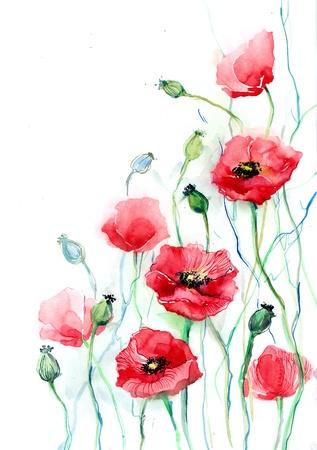 poppy pattern: Poppy flowers (series C)