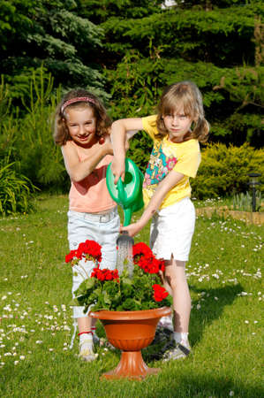 Two small young girls water the flower photo