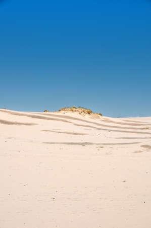 Coastal dune, Poland