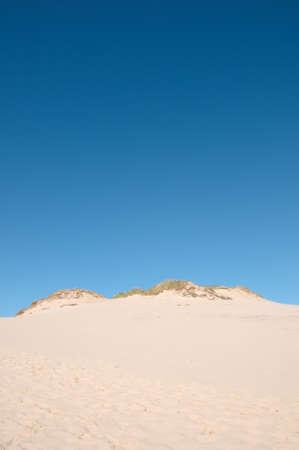 Coastal dune; poland