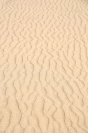 waves of sand - formed by wind