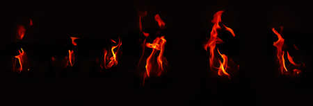 various style fire flame isolated in black background