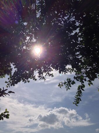 sunny day: D�a soleado