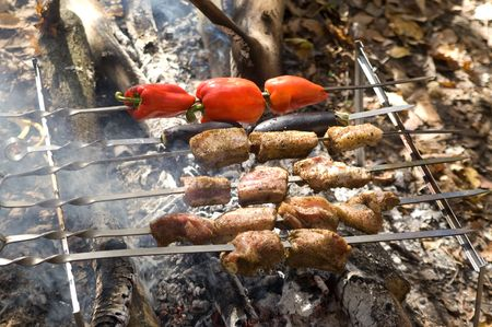smut: Shashlik cooking on fire Stock Photo
