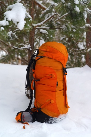 packsack: Backpack in snow forest