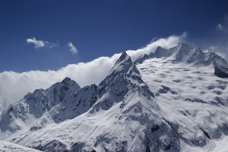 cocaina: Alte montagne. Caucaso. Dombay. Picco Ine.