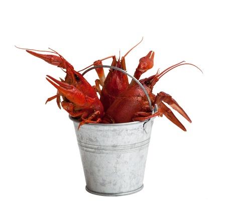 Tin bucket of boiled crawfish. Isolated on white background.