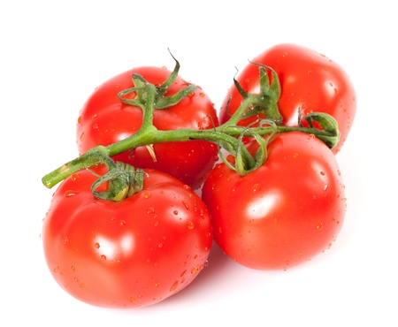 Bunch of fresh tomatoes with water drops on white background photo
