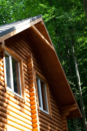 Summer wooden cottage in forest at sunny day photo