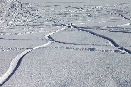off piste: Trace of ski and snowboards in new-fallen snow, off-piste slope Stock Photo