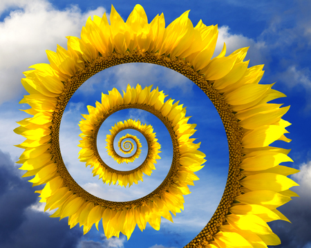 Abstract sunflower spiral and blue sunny sky with clouds photo