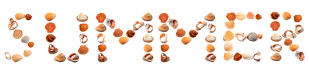 u s: S U M M E R text composed of seashells. Isolated on white background.
