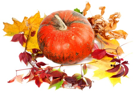 Red ripe pumpkin and autumn leaves. Isolated on white background photo